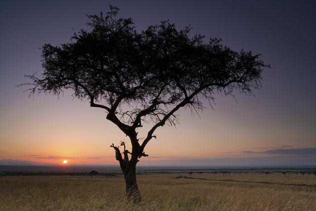 Sunset, Kenya